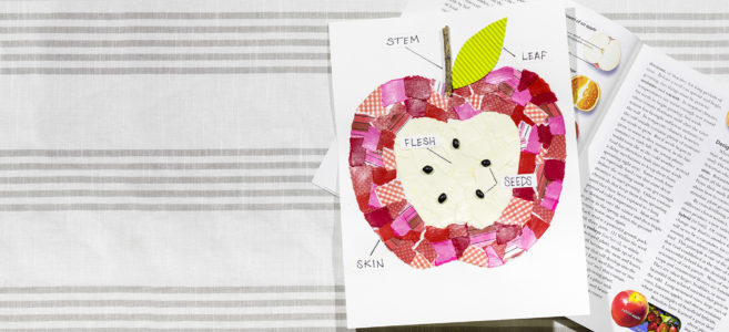 Abeka_Blog_Header_AppleDiagram