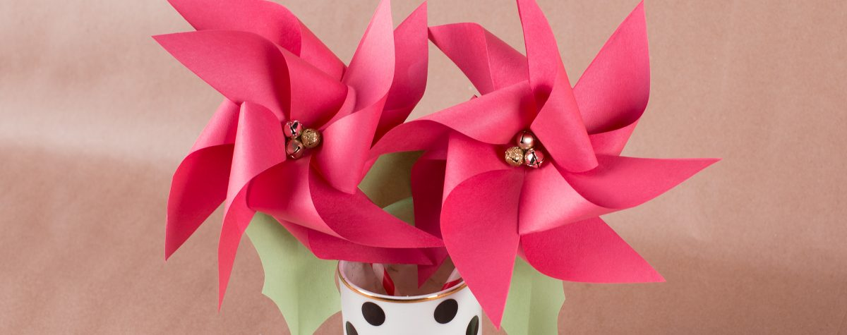 Two Poinsettia Pinwheels in a cup